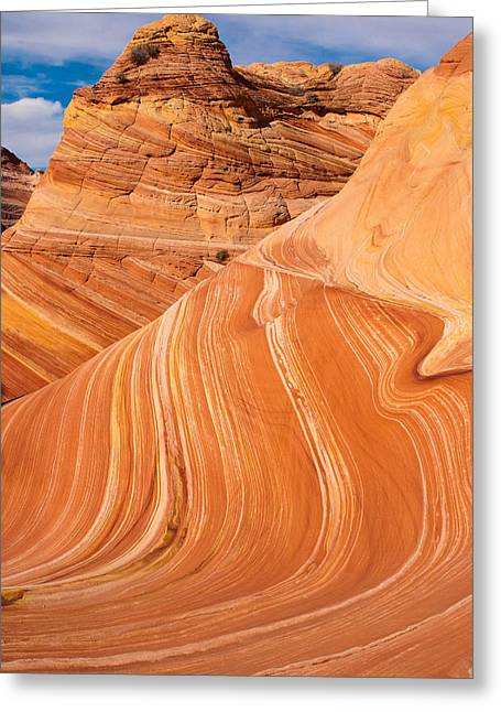 The Wave Coyote Buttes Arizona And Utah Greeting Card by Robert Ford