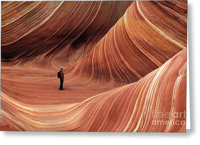 Travel Arizona Greeting Cards - The Wave Seeking Enlightenment Greeting Card by Bob Christopher