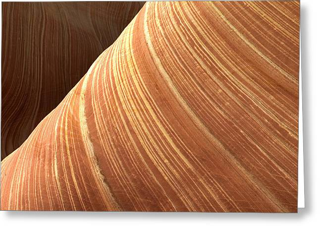 Nature Abstracts Greeting Cards - The Wave Vermillion Cliffs Arizona Greeting Card by Fritz Polking