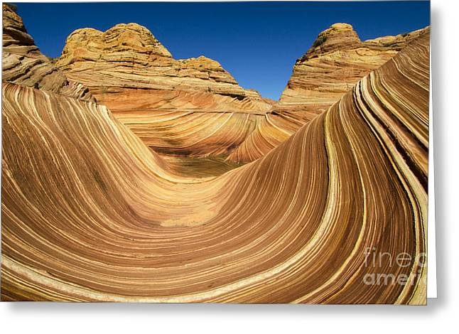 Greeting Cards - The Wave Wonder In Stone 2 Greeting Card by Bob Christopher