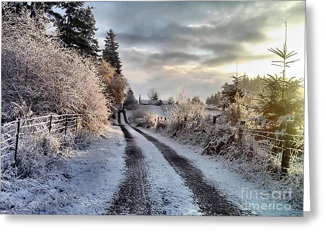 The Way Home Greeting Card by Rory Sagner