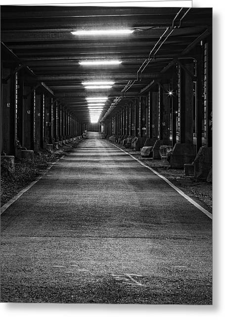 Lighted Pathway Greeting Cards - The Way is Lit Greeting Card by Tim Wilson