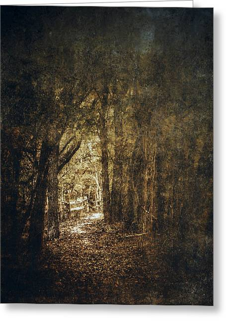Recently Sold -  - Base Path Greeting Cards - The Way Out Greeting Card by Scott Norris