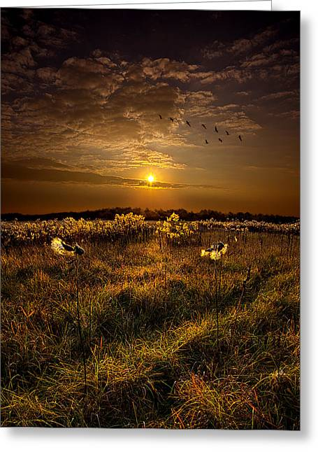 The Way South Greeting Card by Phil Koch