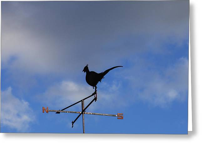 Weathervane Greeting Cards - The Way the Wind Blows Greeting Card by Diane Macdonald