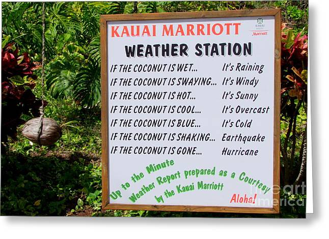 Weather Report Greeting Cards - The Weather Report Greeting Card by Mary Deal