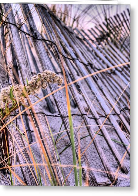 Jones Beach Greeting Cards - The Weed Greeting Card by JC Findley