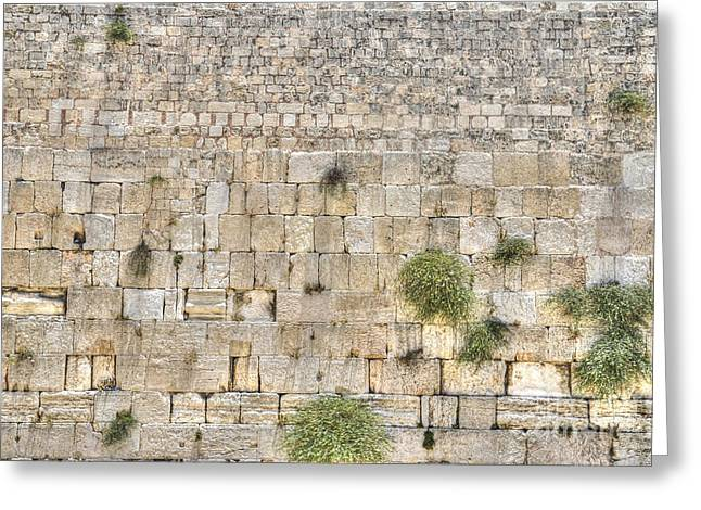 Amirp Greeting Cards - The Western Wall Jerusalem Israel Greeting Card by Amir Paz