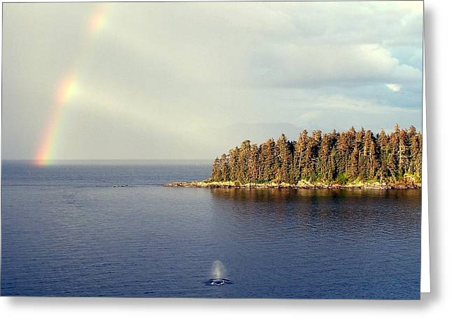 Whale Pastels Greeting Cards - The Whale and the Rainbow Greeting Card by David Henderson