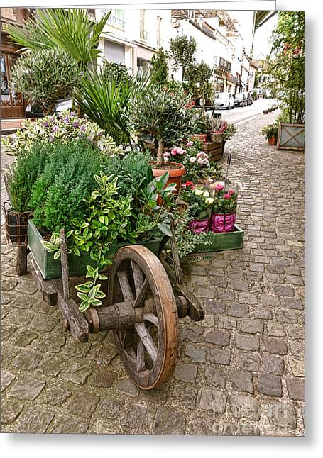 French Shops Greeting Cards - The Wheelbarrow at the Flower Shop Greeting Card by Olivier Le Queinec