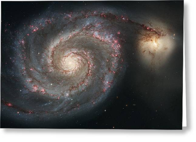 Horsehead Greeting Cards - The Whirlpool Galaxy M51 Greeting Card by Celestial Images