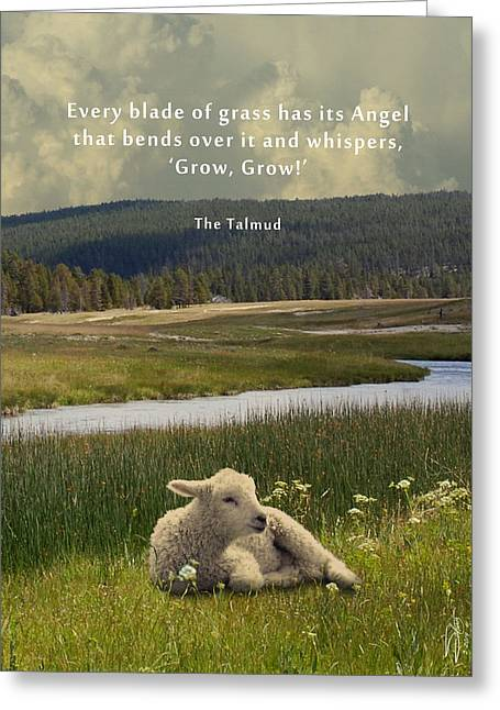 Talmud Greeting Cards - The Whisper Greeting Card by Matthew Schwartz