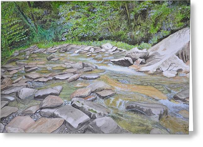 Tennessee River Paintings Greeting Cards - The Whispering Smokies Greeting Card by Swati Singh