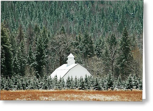 Annie Pflueger Greeting Cards - The White Barn Greeting Card by Annie Pflueger