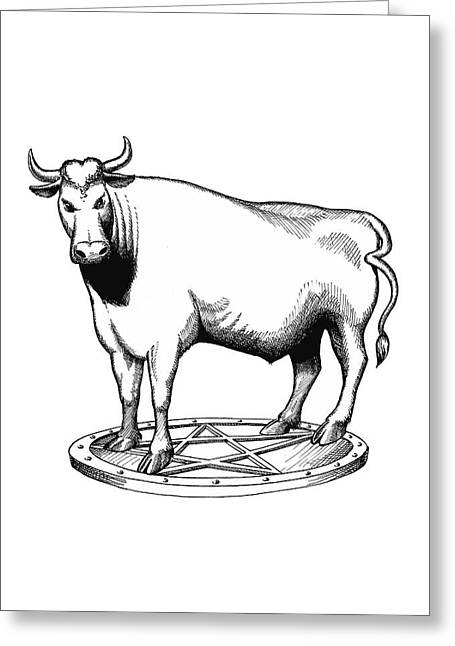 Steer Mixed Media Greeting Cards - The white bull minimalist art Greeting Card by Magdalena Walulik