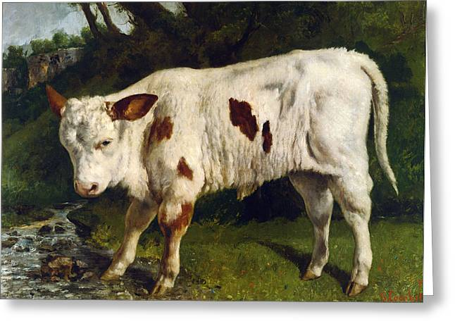 Water In Creek Greeting Cards - The White Calf Greeting Card by Gustave  Courbet