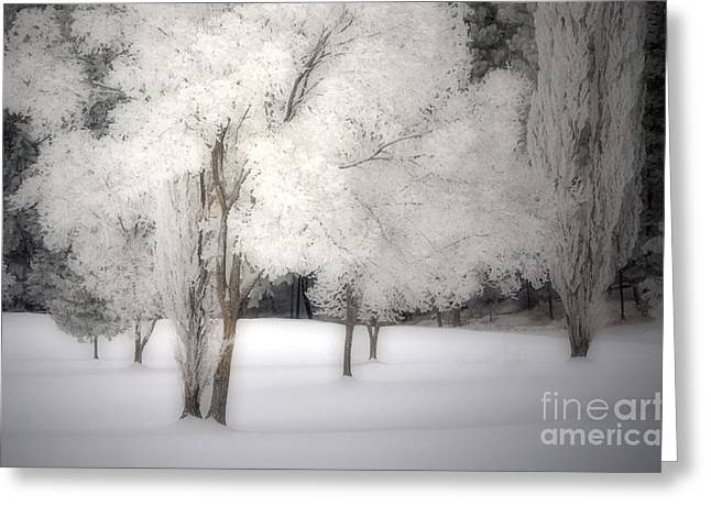 The White Dreams Of Winter Greeting Card by Tara Turner