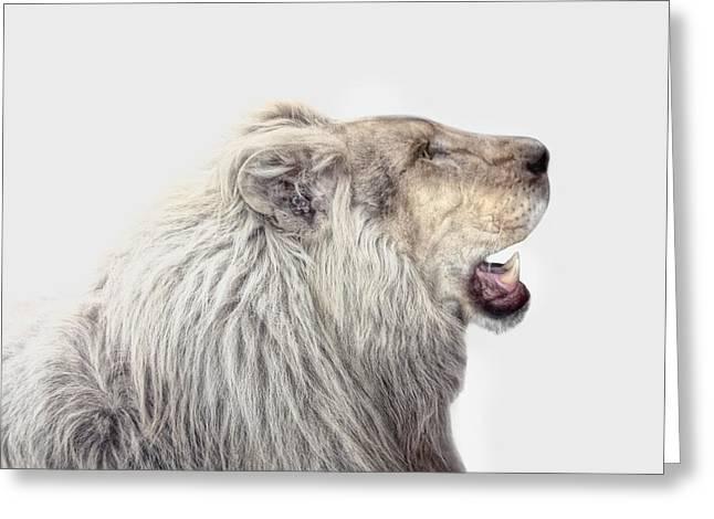 The White Lion Greeting Card by Joachim G Pinkawa