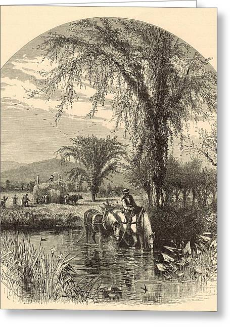 Mt Drawings Greeting Cards - The White Mountains from the Conway Meadows 1872 Engraving Greeting Card by Antique Engravings