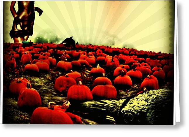 Crows Greeting Cards - The Wicked Pumpkin Patch Greeting Card by Tisha McGee