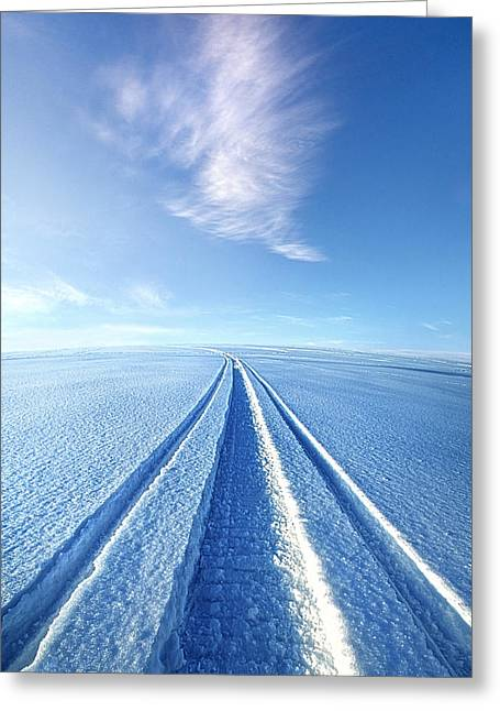 Snowmobile Greeting Cards - The Wild Blue Yonder Greeting Card by Phil Koch