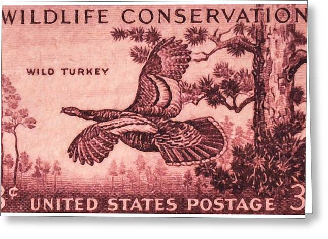 Meleagris Gallopavo Greeting Cards - The Wild Turkey stamp Greeting Card by Lanjee Chee
