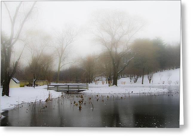 Willow Lake Greeting Cards - The Willows in Winter - Newtown Square Pa Greeting Card by Bill Cannon