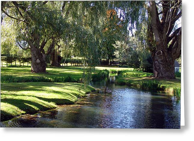 The Willows Of Grand Pre Greeting Card by George Cousins