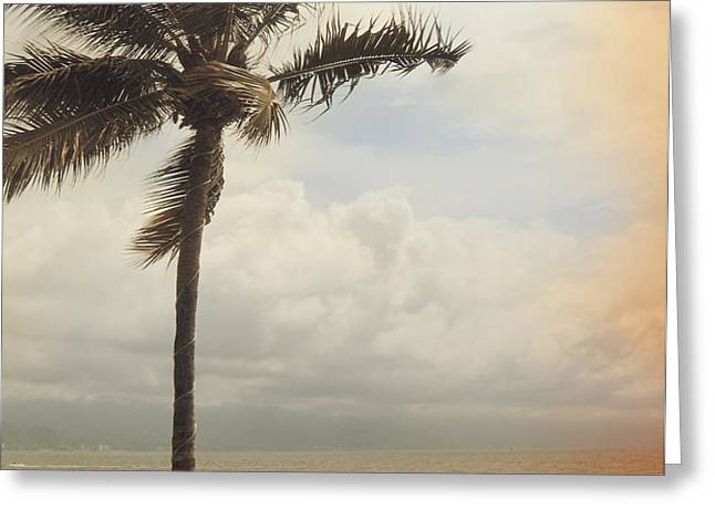 The Wind in My Hair Greeting Card by Laurie Search