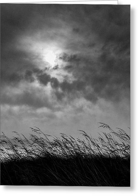 Lightscapes Greeting Cards - The Wind that Shakes the Grass Greeting Card by Hakon Soreide