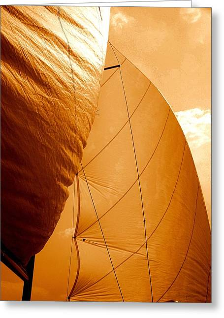Sailboat Images Greeting Cards - The Wind Will Carry Me Greeting Card by Rick Todaro