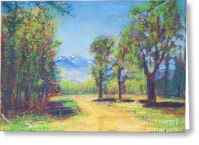 Paradise Road Paintings Greeting Cards - The Winding Road Greeting Card by Terry Anderson