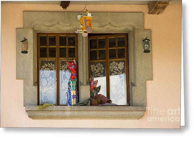 Flag Stone Greeting Cards - The Window Of Cats Greeting Card by Sophie De Roumanie