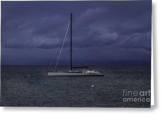 Sailboats In Water Greeting Cards - The Windsong Greeting Card by Mitch Shindelbower