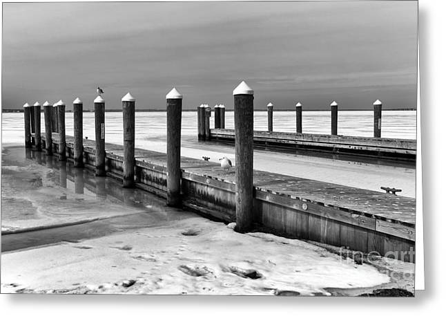 Down The Shore Greeting Cards - The Winter Dock mono Greeting Card by John Rizzuto