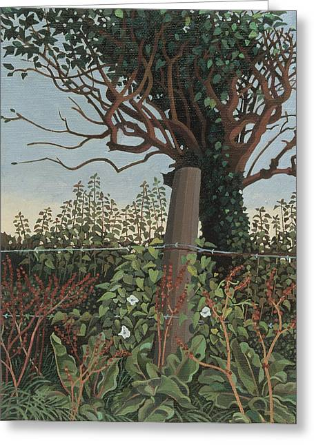 Rural Greeting Cards - The Wire Fence Oil On Canvas Greeting Card by Anna Teasdale