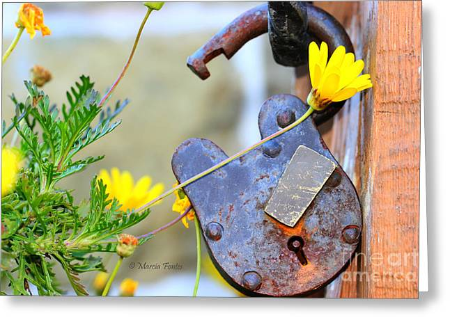 Cambria Greeting Cards - The Wise Owl Padlock - Cambria California  Greeting Card by Tap  On Photo