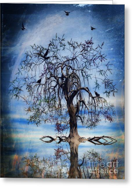 Wishes Digital Art Greeting Cards - The Wishing Tree Greeting Card by John Edwards