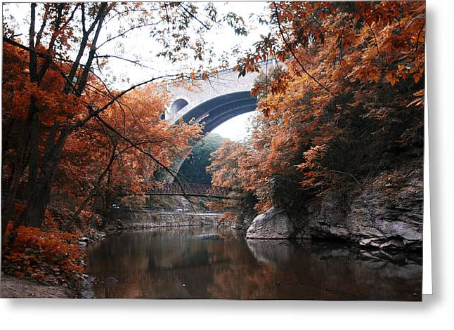 Wissahickon Greeting Cards - The Wissahickon Creek under the Henry Avenue Bridge Greeting Card by Bill Cannon