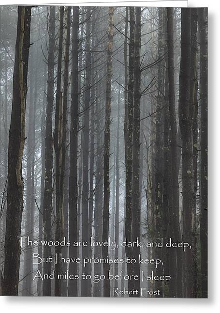 Woodland Scenes Greeting Cards - The Woods Greeting Card by Bill  Wakeley
