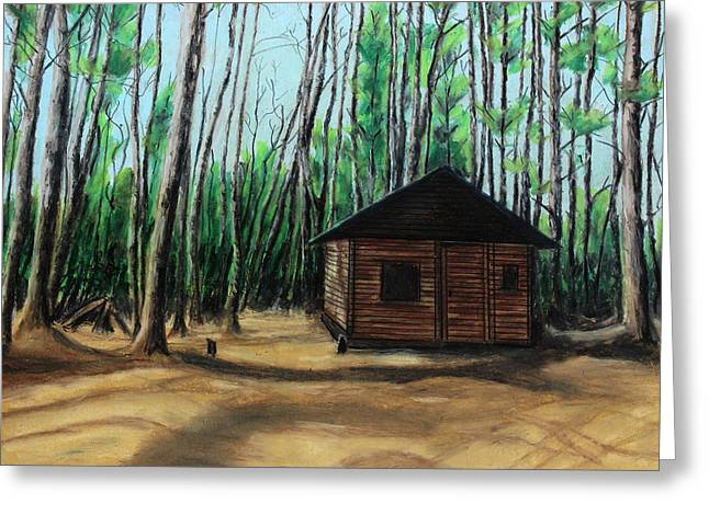 Old Door Pastels Greeting Cards - The woodshed Greeting Card by Jeanne Fischer