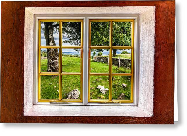 Looking Out Side Greeting Cards - The Yard Greeting Card by Semmick Photo
