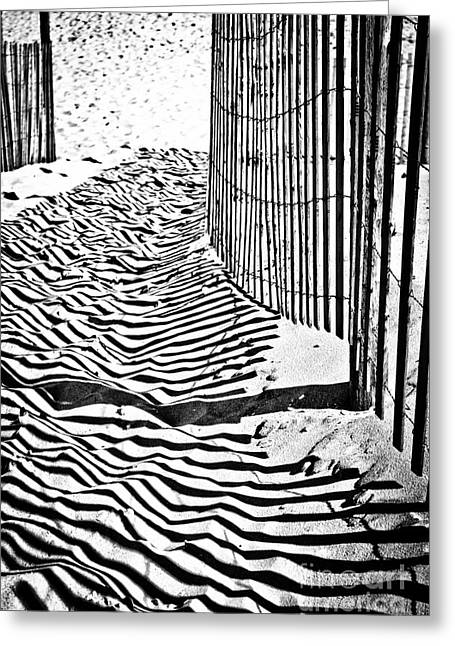 Original Photographs Greeting Cards - The Zebra Walk Greeting Card by Colleen Kammerer