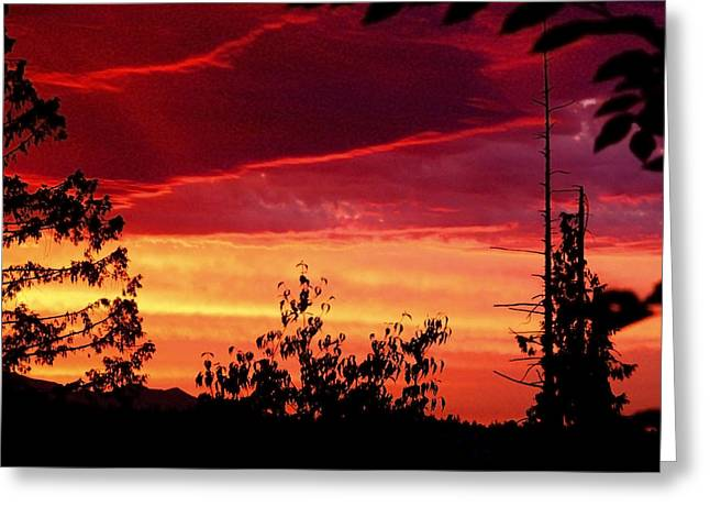 Amazing Sunset Greeting Cards - Thee Sunset of Summer 2014 Greeting Card by Kym Backland