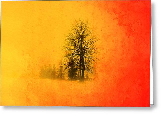 Mystic Sky Art Greeting Cards - Thee Tree  Greeting Card by Mark Ashkenazi