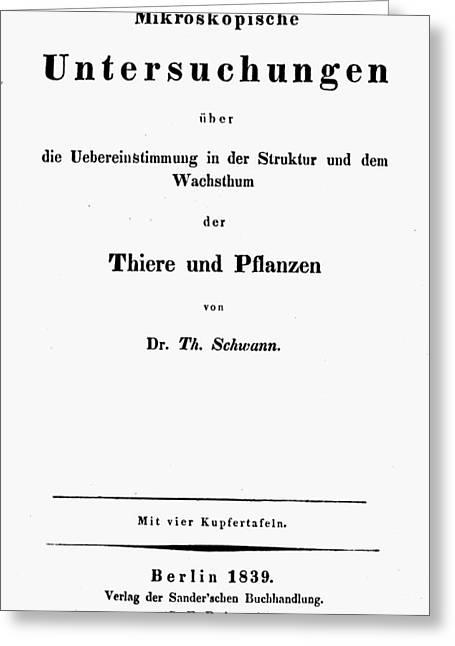 Theodor Schwann (1810-1882) Greeting Card by Granger