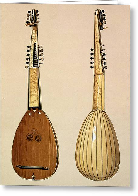 Lute Drawings Greeting Cards - Theorbo, Made By Giovanni Krebar Greeting Card by Alfred James Hipkins