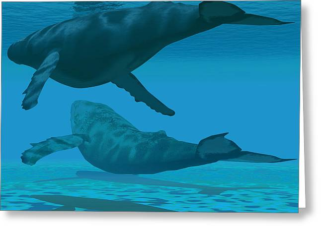 Ocean Mammals Greeting Cards - There be Whales Greeting Card by Corey Ford