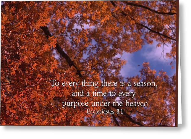 There Is A Season Ecclesiastes Greeting Card by Denise Beverly