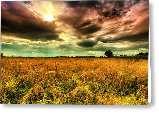 Cereal Digital Art Greeting Cards - There is a sun after the storm Greeting Card by Eti Reid